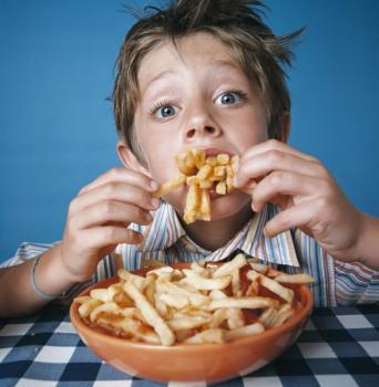 Les bases de l'alimentation